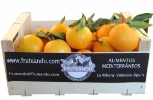 10, 15 o 20 kg de naranjas de zumo o mandarinas