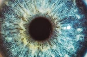 Revisión oftalmológica completa en el Consulta Dr. Cotero y Asociados
